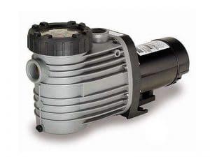 Speck Model E90 Pump