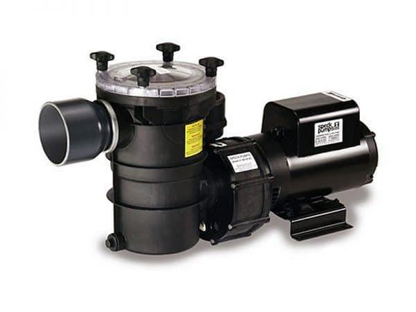 Speck Model 21-80 BS Pump